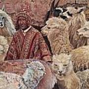 Alpaca shepherd Art Print