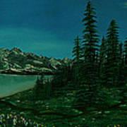 Alpine Garden Art Print