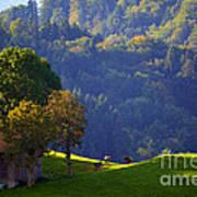 Alpine Summer Scene In Switzerland Art Print