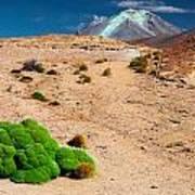 Altiplano Landscape Art Print
