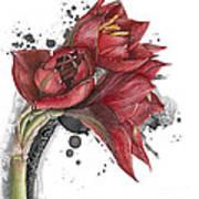 Amaryllis Flowers - 2. -  Elena Yakubovich Art Print