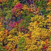 Amazing Cloudland In The Fall Art Print