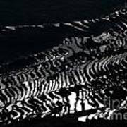 Amazing Rice Terrace In Black And White Art Print