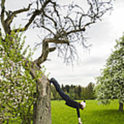 Amazing Stretching Exercise - Bmx Flatland Rider Monika Hinz Uses A Tree Art Print