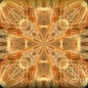Amber Fractal Art Print