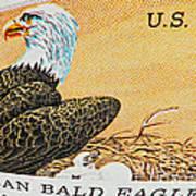 American Bald Eagle Vintage Postage Stamp Print Art Print