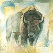 American Bison Buffalo Bull Art Print