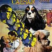 American Cocker Spaniel Art - Julius Caesar Movie Poster Art Print