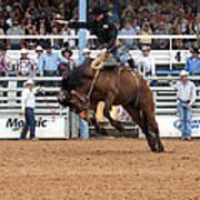 American Cowboy Riding Bucking Rodeo Bronc I Art Print