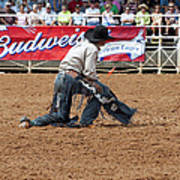 American Cowboy Thrown From A  Bucking Rodeo Bronc Art Print