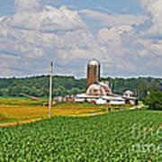 American Farmland 3 Art Print