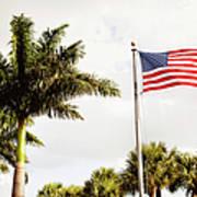 American Flag Flying Amongst Palm Trees Art Print