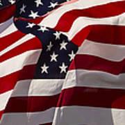 American Flags   #5147 Art Print