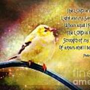 American Goldfinch Gazes Upward  - Series II  Digital Paint With Verse Art Print