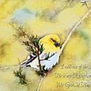 American Goldfinch On A Cedar Twig With Digital Paint And Verse Art Print