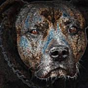American Mastiff Art Print