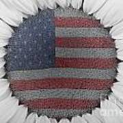 American Sunflower Power Art Print