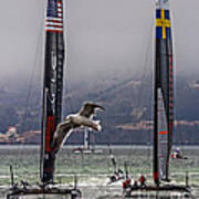 Americas Cup Oracle Team Usa V Artemis Racing Art Print