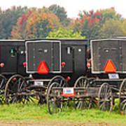 Amish Buggies 2 Art Print