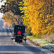 Amish Buggy And Yellow Leaves Art Print
