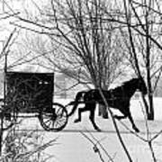 Amish Buggy Revised Art Print