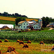 Amish Farm On Laundry Day Art Print