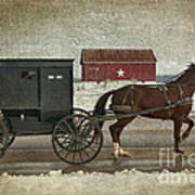 Amish Horse And Buggy And The Star Barn Art Print