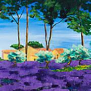 Among The Lavender Art Print