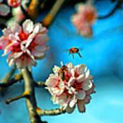An Almond Pollen Day Art Print