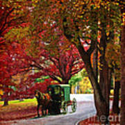 An Amish Autumn Ride Art Print