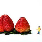An Artist Drawing Strawberries Art Print by Paul Ge