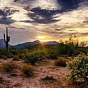 An Evening In The Desert  Art Print