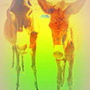 Donkey Mother And Son On An Extremely Hot Day  Art Print