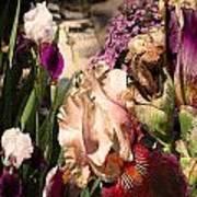 An Iris Surprise Left Art Print