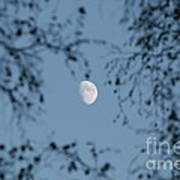 An October Moon Art Print