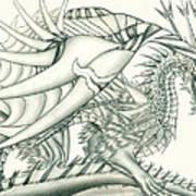 Anare'il The Chaos Dragon Art Print
