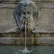 Ancient Fountain Art Print
