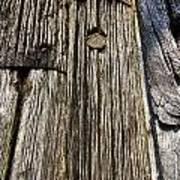 Ancient Timber Art Print