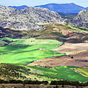 Andalucia Landscape In Spain Art Print