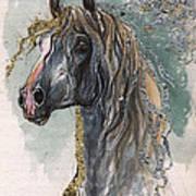 Andalusian Horse 2014 11 11 Art Print