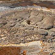 Anemone Geyser In Upper Geyser Basin Art Print