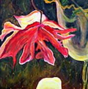 Anemone Me Art Print by Jolanta Anna Karolska