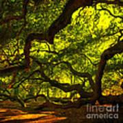 Angel Oak Limbs Crop 40 Art Print