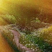 Angel Rays. Follow The Sun Art Print