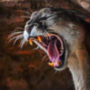 Angry Cougar Art Print