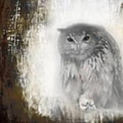 Angry Owl's Talons Art Print
