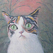 Anguish Of A Cat Art Print