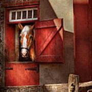 Animal - Horse - Calvins House  Art Print by Mike Savad
