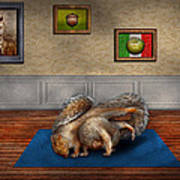 Animal - Squirrel - And Stretch Two Three Four Art Print