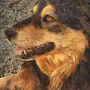 animals - dogs - Faithful Friend Art Print